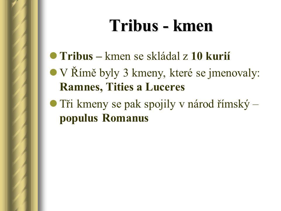 Tribus - kmen Tribus – kmen se skládal z 10 kurií V Římě byly 3 kmeny, které se jmenovaly: Ramnes, Tities a Luceres Tři kmeny se pak spojily v národ římský – populus Romanus