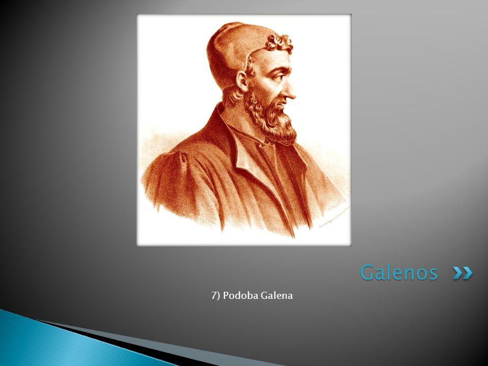 7) Podoba Galena Galenos