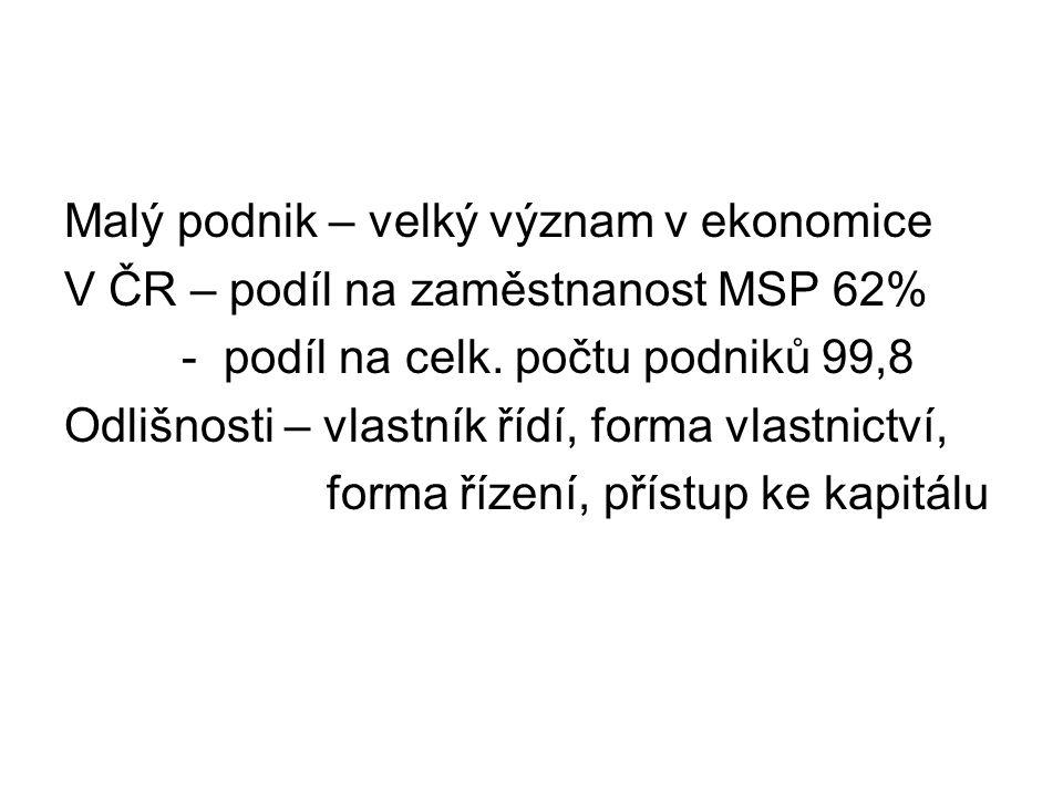 Malý podnik – velký význam v ekonomice V ČR – podíl na zaměstnanost MSP 62% - podíl na celk. počtu podniků 99,8 Odlišnosti – vlastník řídí, forma vlas