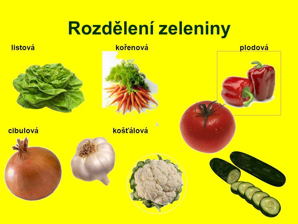 Rozdělení zeleniny listová kořenová plodová cibulová košťálová