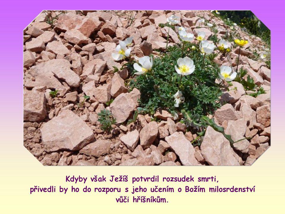 Podle něj totiž měli přímí svědkové provinění začít házet kamením na toho, kdo hřešil, a lid pak měl pokračovat.