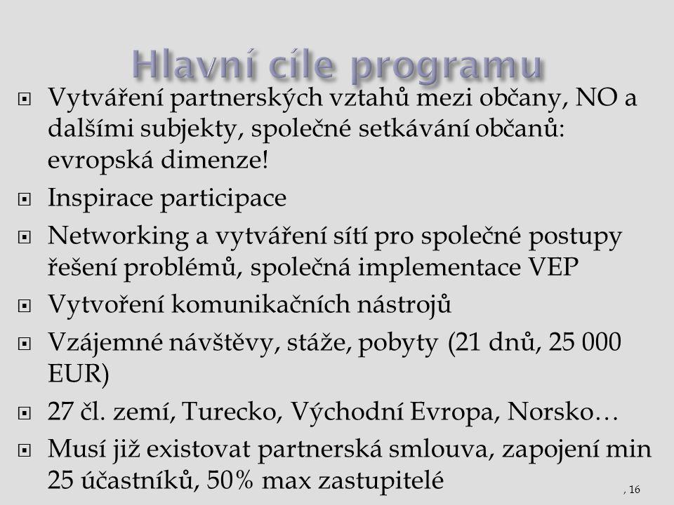  Vytváření partnerských vztahů mezi občany, NO a dalšími subjekty, společné setkávání občanů: evropská dimenze!  Inspirace participace  Networking