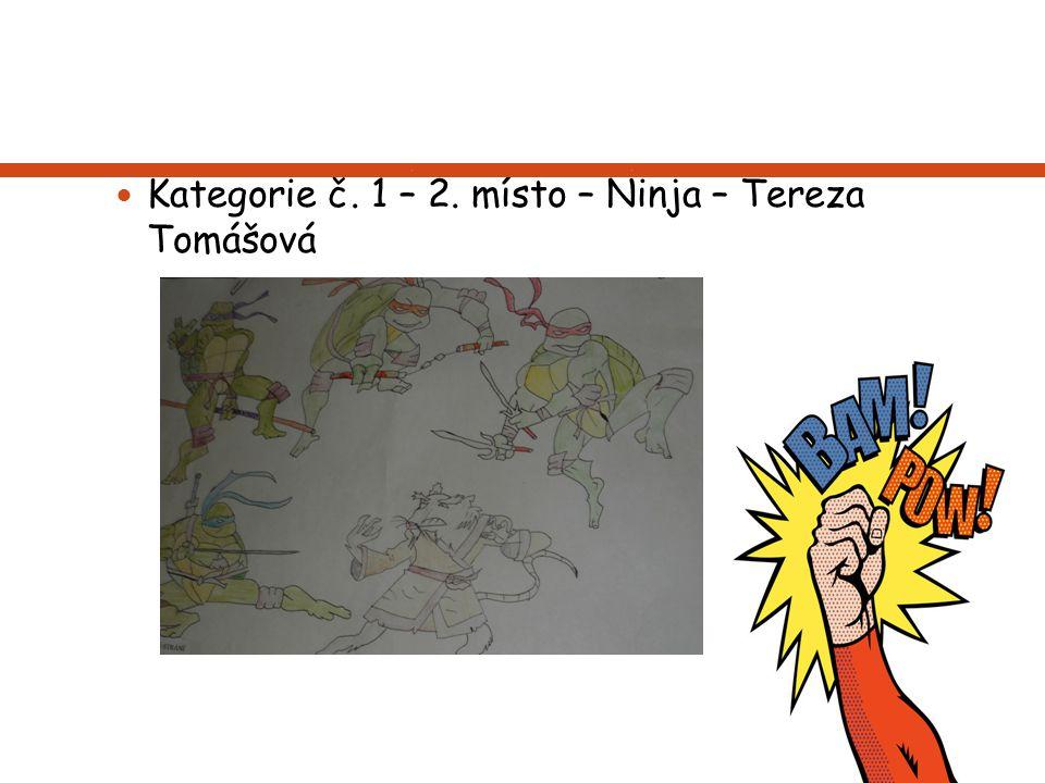 Kategorie č. 1 – 2. místo – Ninja – Tereza Tomášová