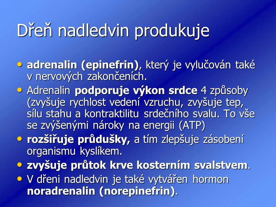 Dřeň nadledvin produkuje adrenalin (epinefrin), který je vylučován také v nervových zakončeních.