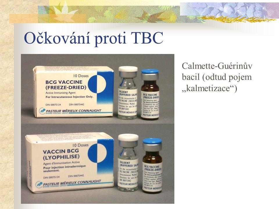 """Očkování proti TBC Calmette-Guérinův bacil (odtud pojem """"kalmetizace"""")"""