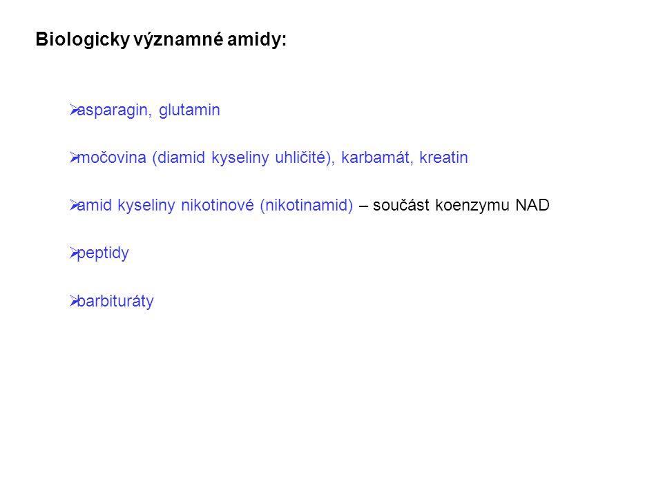 Biologicky významné amidy:  asparagin, glutamin  močovina (diamid kyseliny uhličité), karbamát, kreatin  amid kyseliny nikotinové (nikotinamid) – s