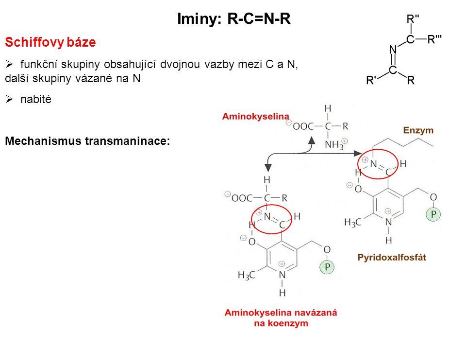 Iminy: R-C=N-R Schiffovy báze  funkční skupiny obsahující dvojnou vazby mezi C a N, další skupiny vázané na N  nabité Mechanismus transmaninace: