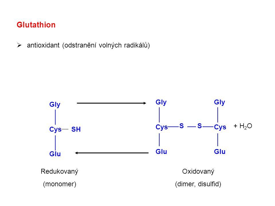 Glutathion  antioxidant (odstranění volných radikálů) Gly Cys Glu Gly Cys Glu Gly Cys SH Glu S Oxidovaný (dimer, disulfid) Redukovaný (monomer) + H 2