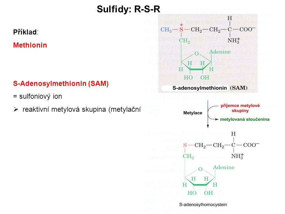 Příklad: Methionin S-Adenosylmethionin (SAM) = sulfoniový ion  reaktivní metylová skupina (metylační agens)! Sulfidy: R-S-R