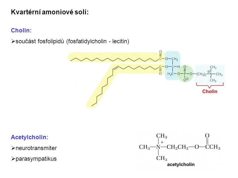 Kvartérní amoniové soli: Cholin:  součást fosfolipidů (fosfatidylcholin - lecitin) Acetylcholin:  neurotransmiter  parasympatikus