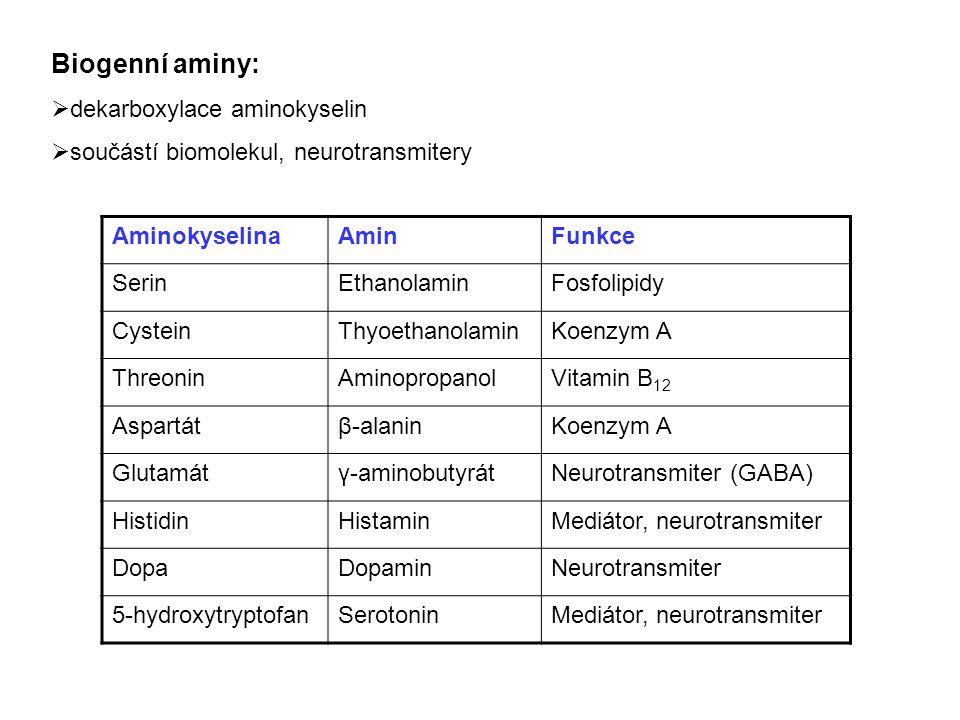 Biogenní aminy – příklady: