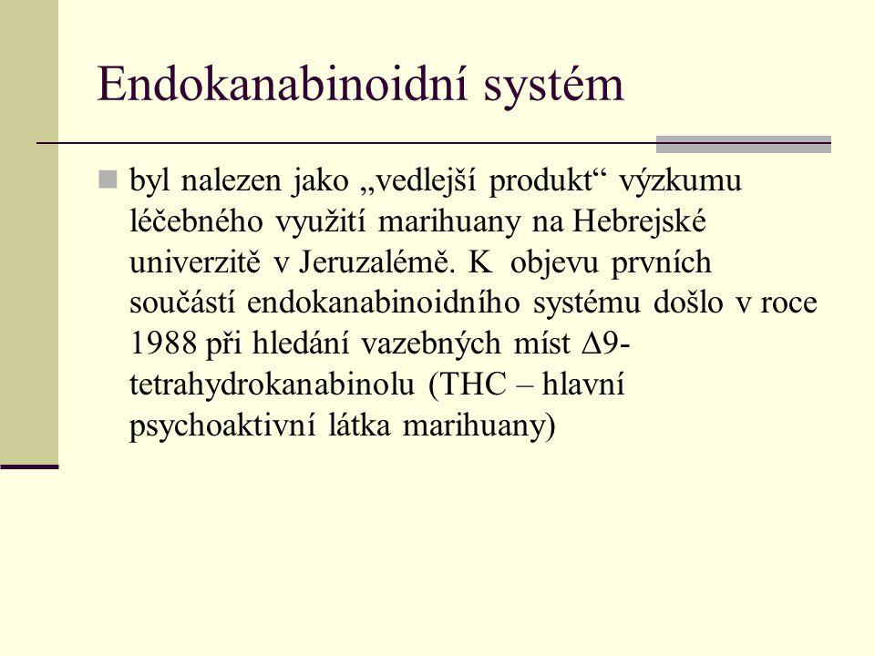 """Endokanabinoidní systém byl nalezen jako """"vedlejší produkt"""" výzkumu léčebného využití marihuany na Hebrejské univerzitě v Jeruzalémě. K objevu prvních"""