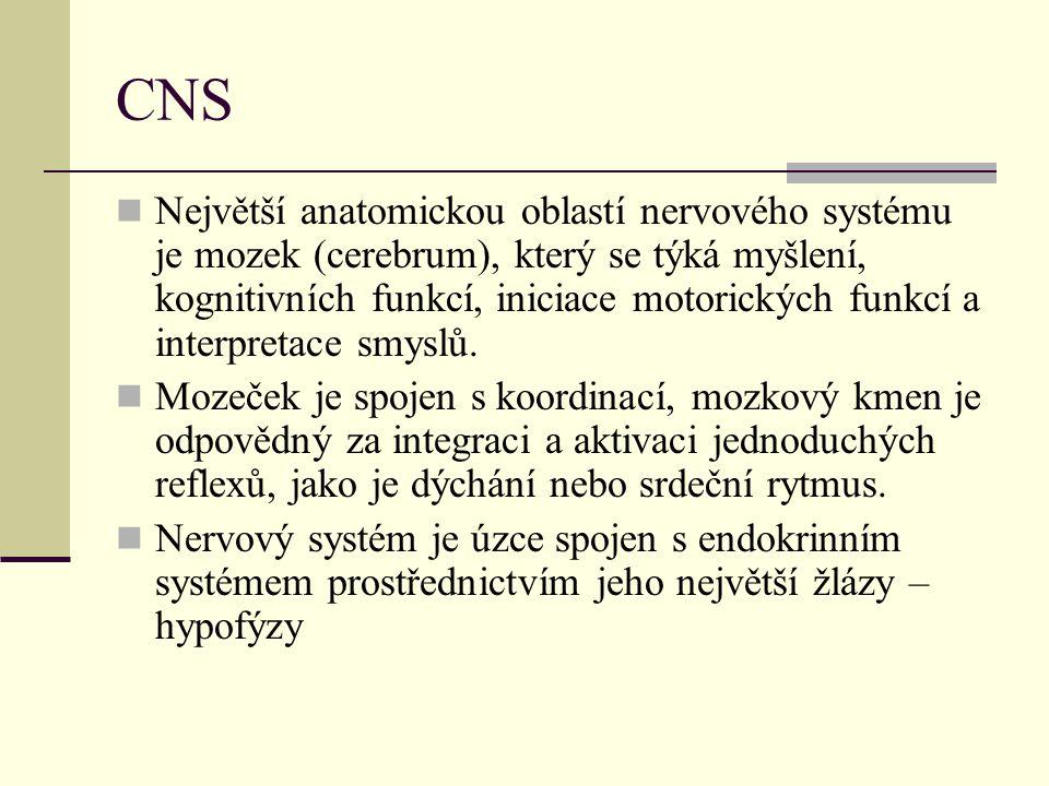 CNS Největší anatomickou oblastí nervového systému je mozek (cerebrum), který se týká myšlení, kognitivních funkcí, iniciace motorických funkcí a inte