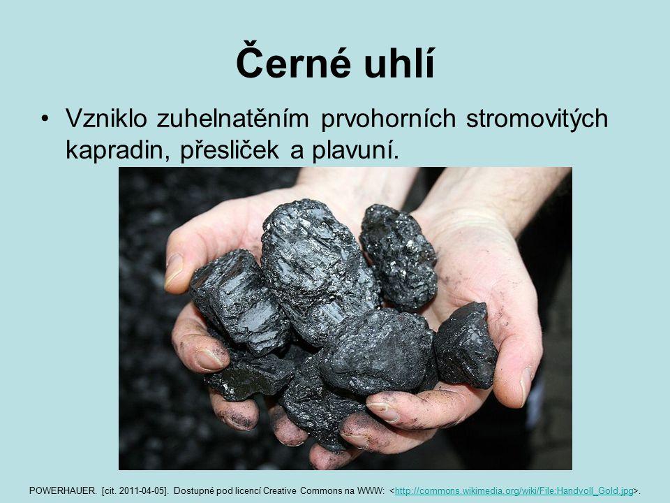 Černé uhlí Vzniklo zuhelnatěním prvohorních stromovitých kapradin, přesliček a plavuní. POWERHAUER. [cit. 2011-04-05]. Dostupné pod licencí Creative C