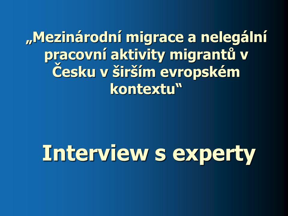 """""""Mezinárodní migrace a nelegální pracovní aktivity migrantů v Česku v širším evropském kontextu"""" Interview s experty"""