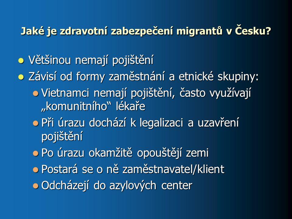 Jaké je zdravotní zabezpečení migrantů v Česku? Většinou nemají pojištění Většinou nemají pojištění Závisí od formy zaměstnání a etnické skupiny: Závi