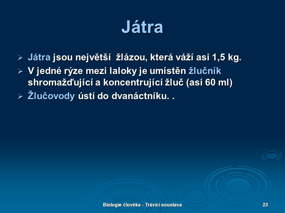 Biologie člověka - Trávicí soustava23 Játra  Játra jsou největší žlázou, která váží asi 1,5 kg.  V jedné rýze mezi laloky je umístěn žlučník shromaž