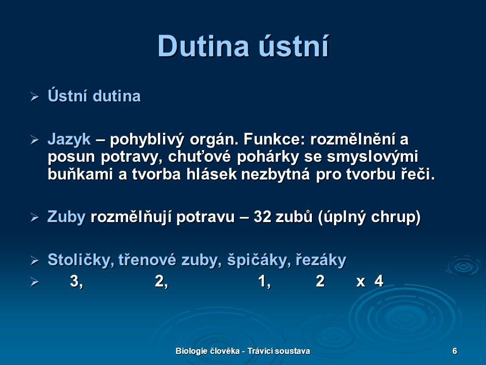 Biologie člověka - Trávicí soustava6 Dutina ústní  Ústní dutina  Jazyk – pohyblivý orgán. Funkce: rozmělnění a posun potravy, chuťové pohárky se smy