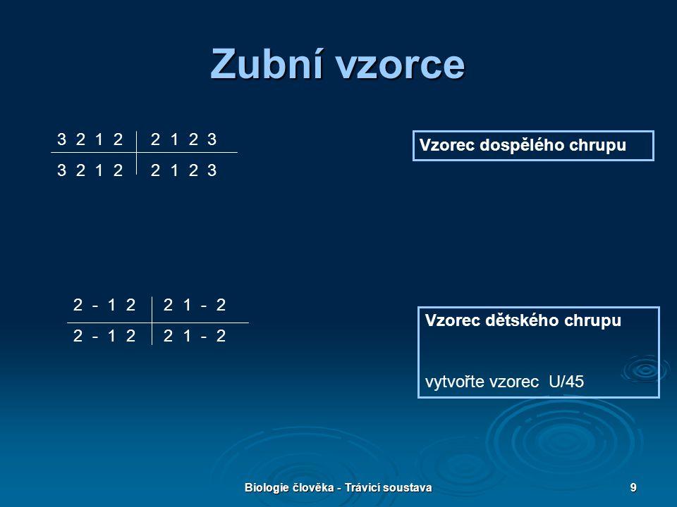 Biologie člověka - Trávicí soustava9 Zubní vzorce Vzorec dětského chrupu vytvořte vzorec U/45 Vzorec dospělého chrupu 3 2 1 2 2 1 2 3 2 - 1 2 2 1 - 2