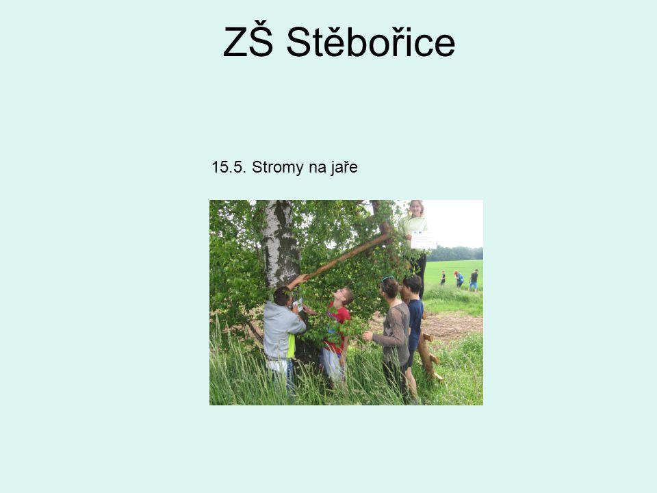 ZŠ Stěbořice 15.5. Stromy na jaře