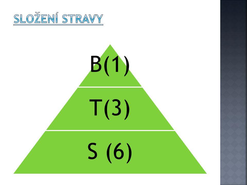 B(1) T(3) S (6)