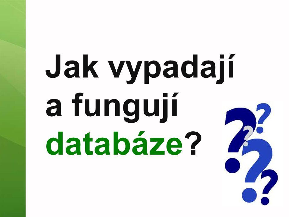 Jak vypadají a fungují databáze?