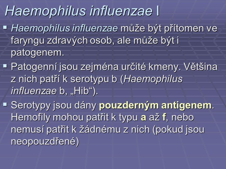 Haemophilus influenzae I  Haemophilus influenzae může být přítomen ve faryngu zdravých osob, ale může být i patogenem.  Patogenní jsou zejména určit