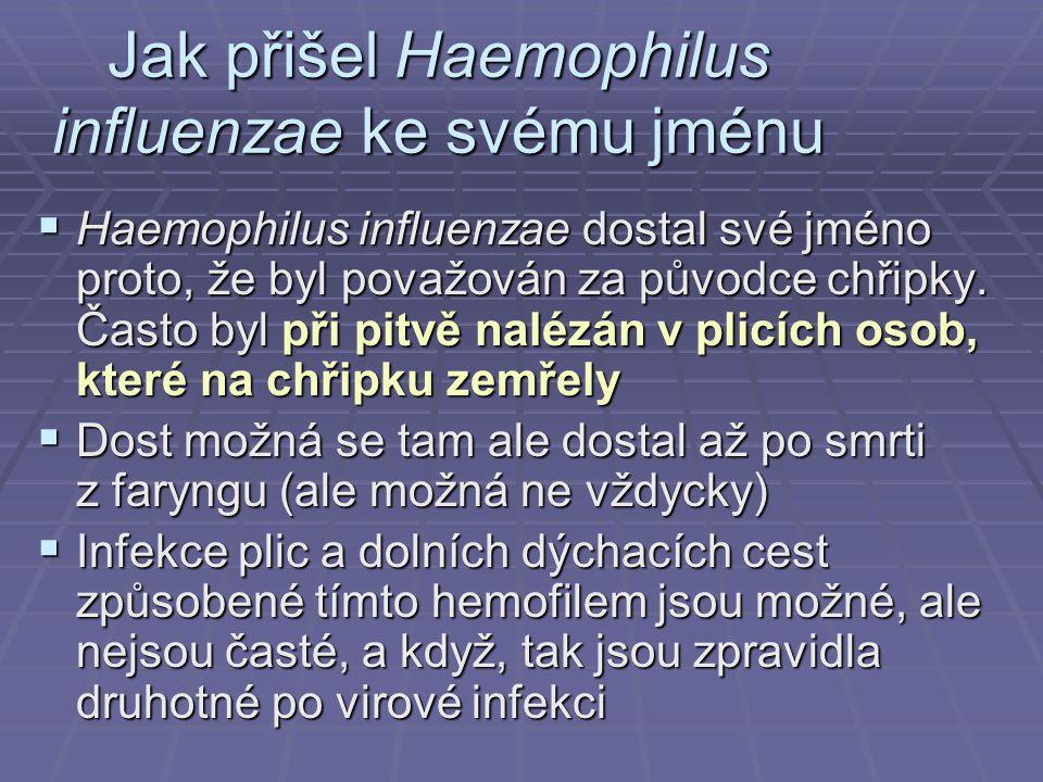 Jak přišel Haemophilus influenzae ke svému jménu  Haemophilus influenzae dostal své jméno proto, že byl považován za původce chřipky. Často byl při p