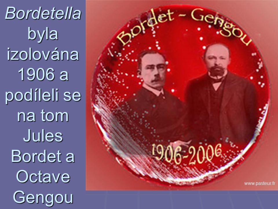 Bordetella byla izolována 1906 a podíleli se na tom Jules Bordet a Octave Gengou www.pasteur.fr