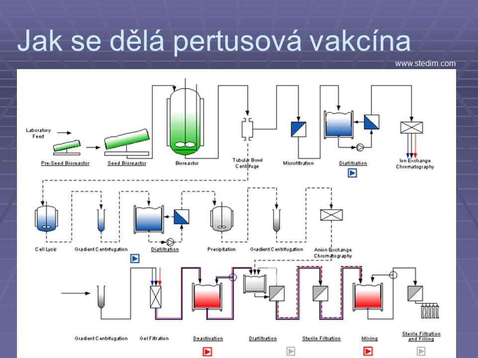Jak se dělá pertusová vakcína www.stedim.com