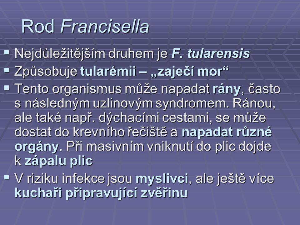 """Rod Francisella  Nejdůležitějším druhem je F. tularensis  Způsobuje tularémii – """"zaječí mor""""  Tento organismus může napadat rány, často s následným"""