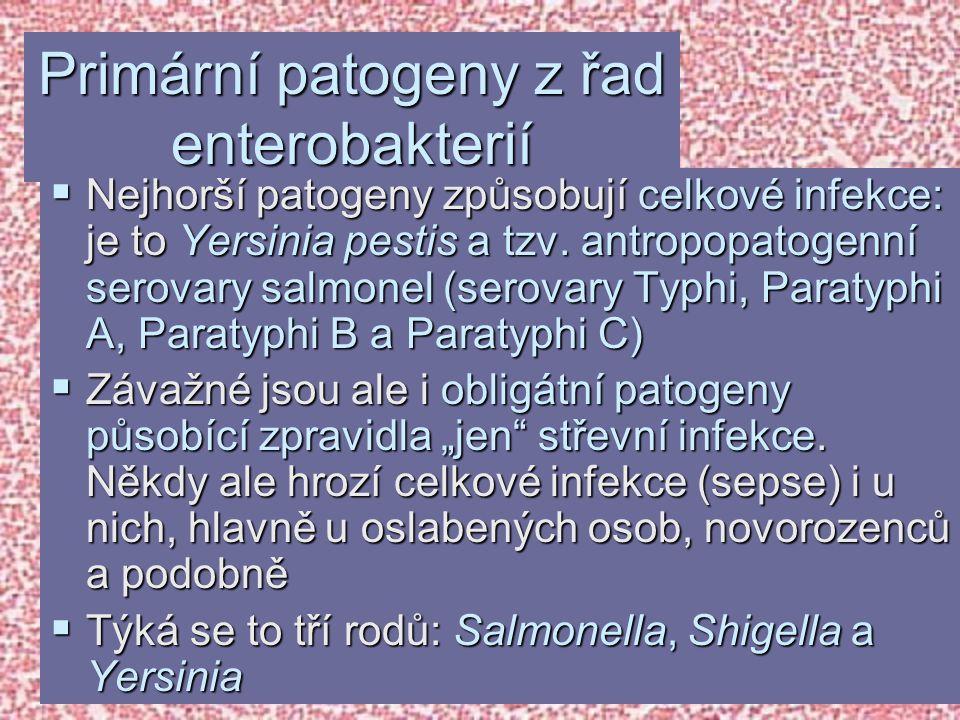Primární patogeny z řad enterobakterií  Nejhorší patogeny způsobují celkové infekce: je to Yersinia pestis a tzv. antropopatogenní serovary salmonel