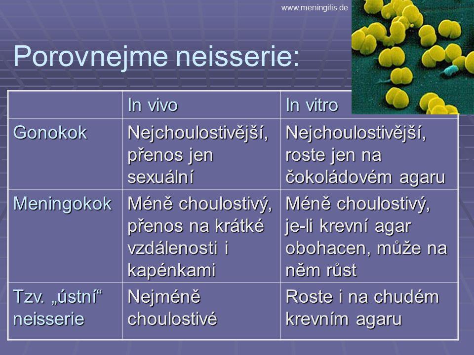 Porovnejme neisserie: In vivo In vitro Gonokok Nejchoulostivější, přenos jen sexuální Nejchoulostivější, roste jen na čokoládovém agaru Meningokok Méně choulostivý, přenos na krátké vzdálenosti i kapénkami Méně choulostivý, je-li krevní agar obohacen, může na něm růst Tzv.
