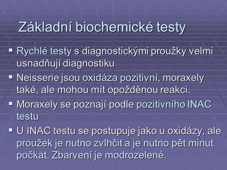 Základní biochemické testy  Rychlé testy s diagnostickými proužky velmi usnadňují diagnostiku  Neisserie jsou oxidáza pozitivní, moraxely také, ale