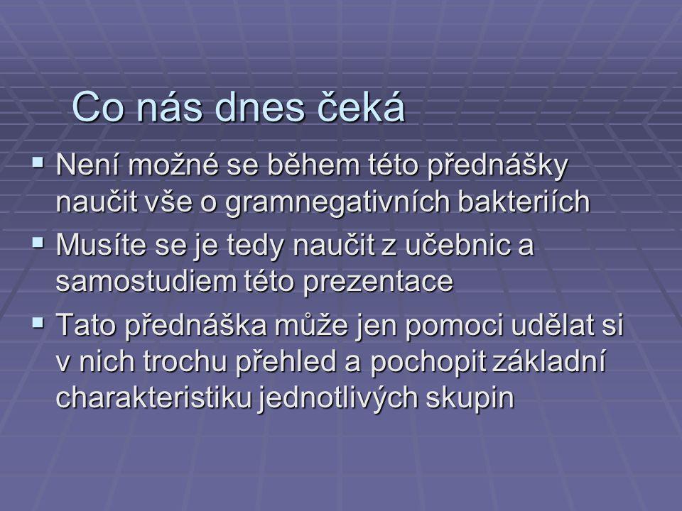 gsbs.utmb.edu