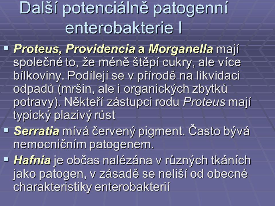 Další potenciálně patogenní enterobakterie I  Proteus, Providencia a Morganella mají společné to, že méně štěpí cukry, ale více bílkoviny. Podílejí s