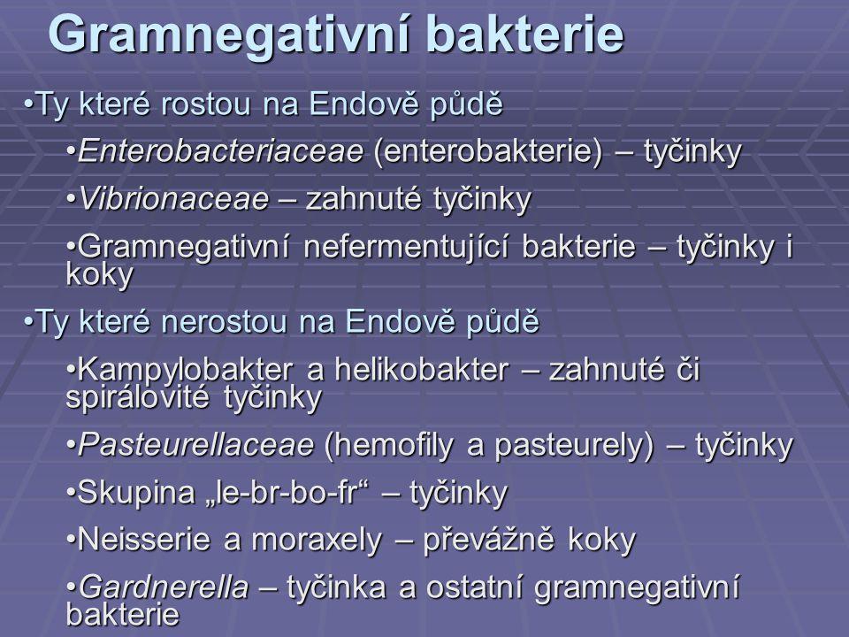 Gramnegativní bakterie Ty které rostou na Endově půděTy které rostou na Endově půdě Enterobacteriaceae (enterobakterie) – tyčinkyEnterobacteriaceae (e