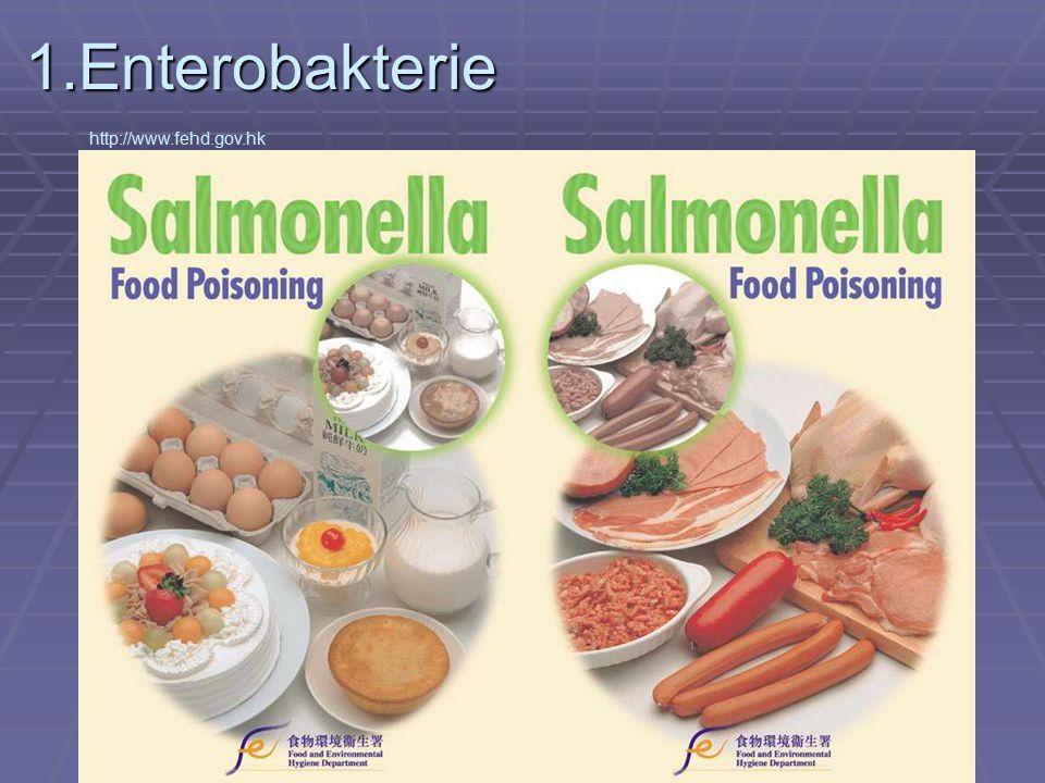 1.Enterobakterie http://www.fehd.gov.hk