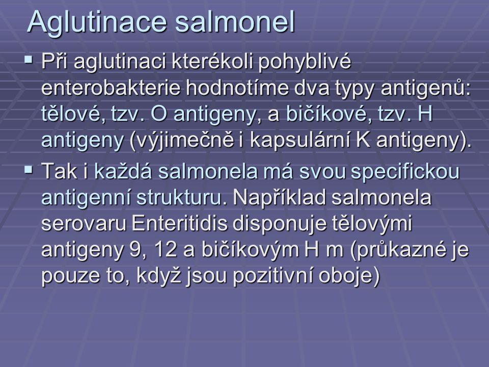 Aglutinace salmonel  Při aglutinaci kterékoli pohyblivé enterobakterie hodnotíme dva typy antigenů: tělové, tzv. O antigeny, a bičíkové, tzv. H antig