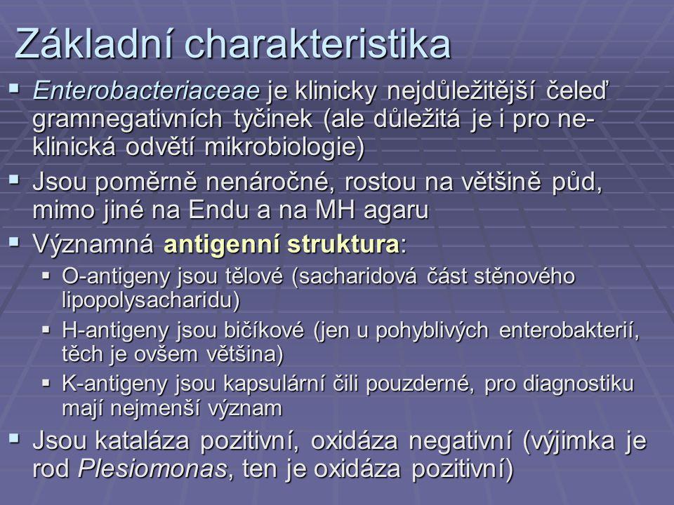Používaná antibiotika AntibiotikumZkratka Referenční zóna* Piperacilin + tazobaktam TZP 22 mm Gentamicin (aminoglykos.) CN 18 mm Imipenem (karbapenem) IMP/IMI 22 mm Ciprofloxacin (chin 3 gen) CIP 29 mm Ceftazidim (CS 3 gen) CAZ 16 mm ColistinCT 12 mm