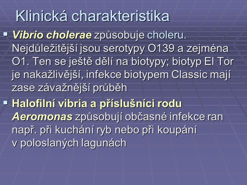 Klinická charakteristika  Vibrio cholerae způsobuje choleru. Nejdůležitější jsou serotypy O139 a zejména O1. Ten se ještě dělí na biotypy; biotyp El