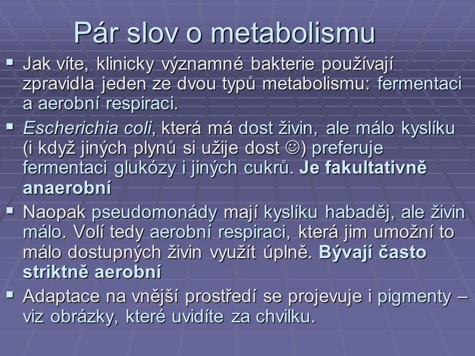 Pár slov o metabolismu  Jak víte, klinicky významné bakterie používají zpravidla jeden ze dvou typů metabolismu: fermentaci a aerobní respiraci.  Es