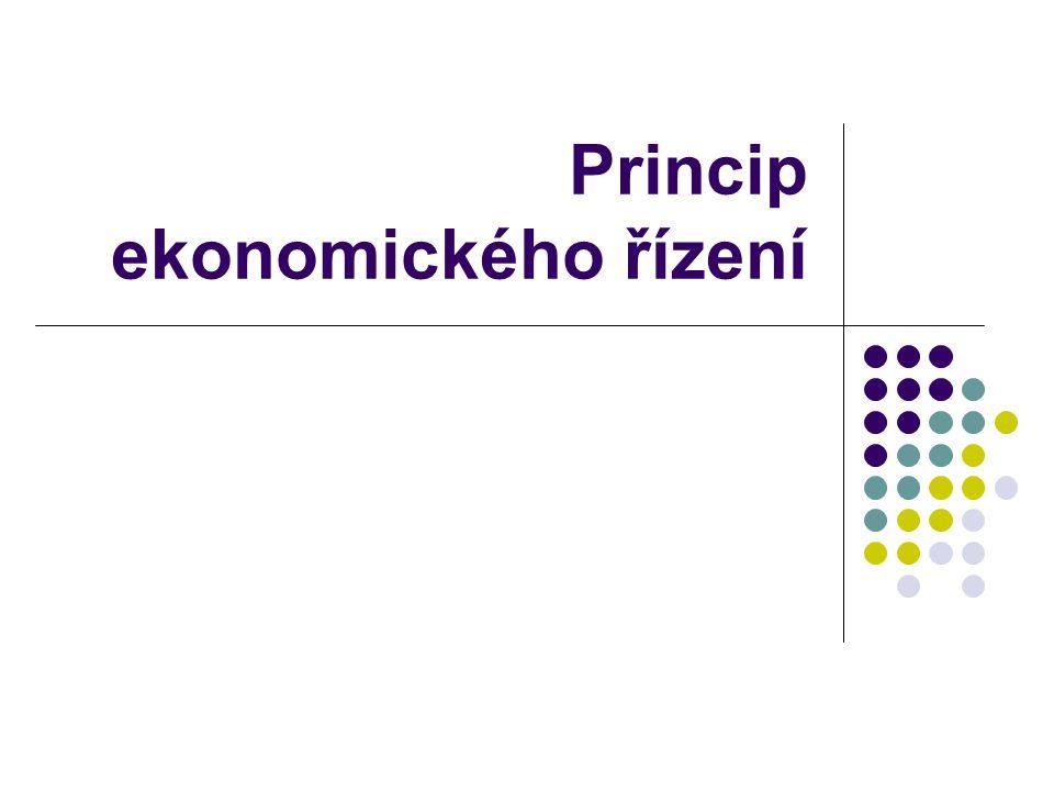 Operativní ekonomické řízení základním kritériem úspěchu: dosažení zisku z činnosti podniku (přebytku přírůstků peněžně vyjádřené užitečnosti výstupů podniku nad úbytky peněžně vyjádřené užitečnosti spotřebovaných zdrojů) nástroje řízení ekonomické účinnosti: detailní rozbor samostatně sledovaných přínosů částí podniku (střediska v nákladovém účetnictví) spojený s: rozpočtováním, průběžnou kontrolou a informováním (reportingem) detailní rozbor samostatně sledovaných přínosů jednotlivých druhů výkonů (druhů výrobků, zboží, služeb) obsažený v předběžných a výsledných kalkulacích