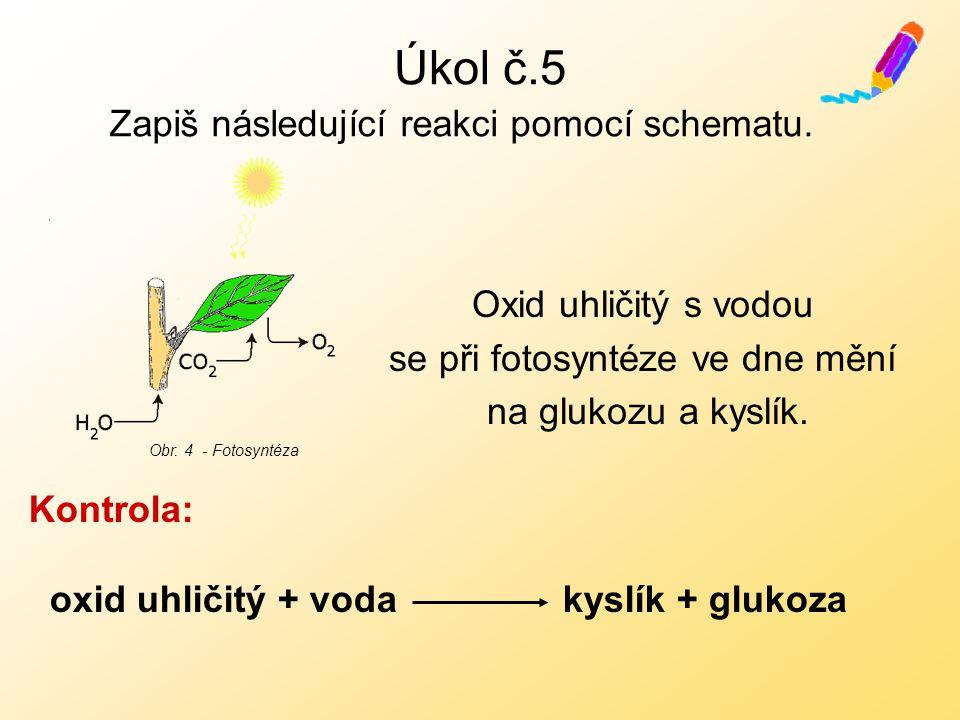 Úkol č.5 Oxid uhličitý s vodou se při fotosyntéze ve dne mění na glukozu a kyslík.