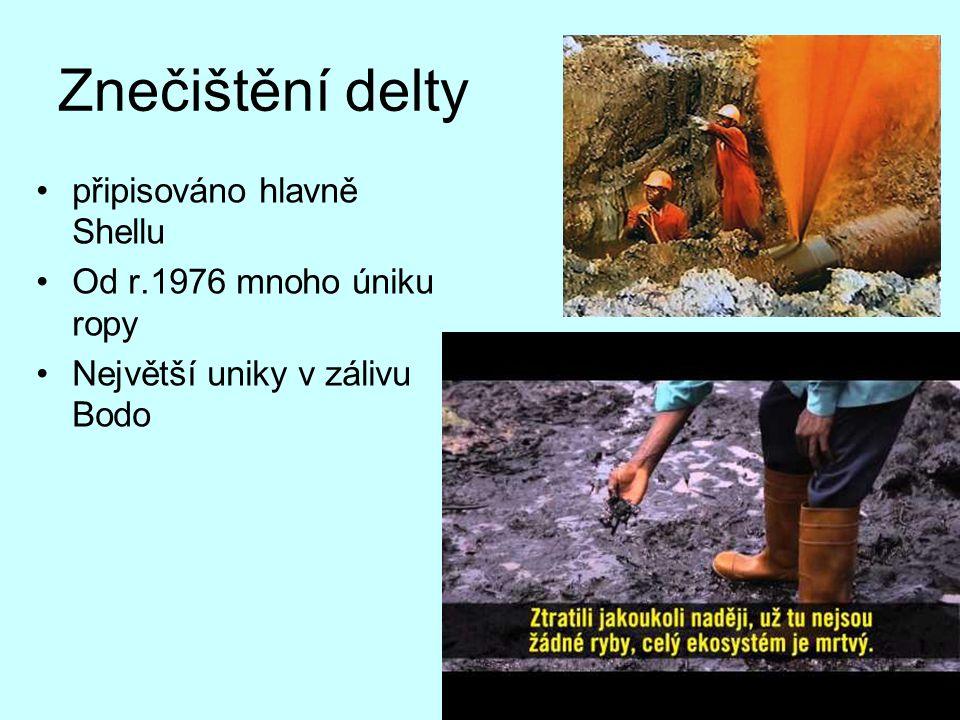 Znečištění delty připisováno hlavně Shellu Od r.1976 mnoho úniku ropy Největší uniky v zálivu Bodo