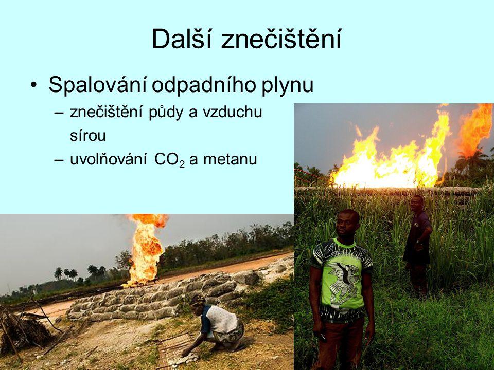 Další znečištění Spalování odpadního plynu –znečištění půdy a vzduchu sírou –uvolňování CO 2 a metanu