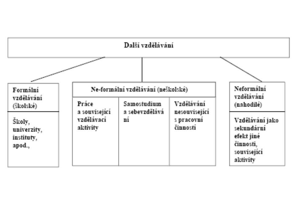 Další vzdělávání Oblasti: Všeobecné vzdělávání (přípravné kurzy, jazykové vzdělávání) Další odborné vzdělávání a příprava (rekvalifikace) Oblast občanského/zájmového vzdělávání