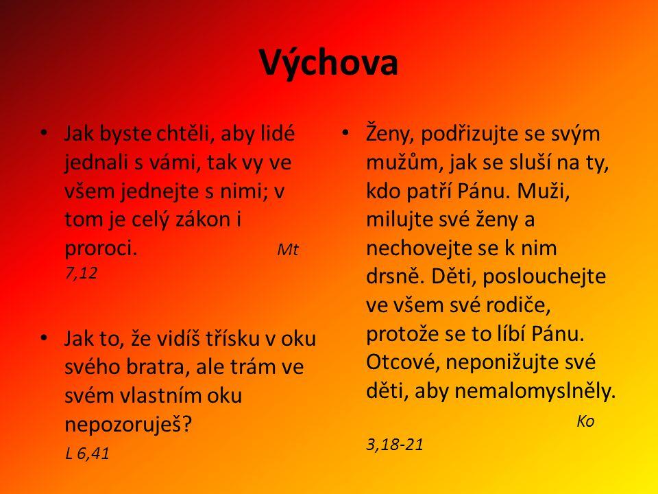 Výchova Jak byste chtěli, aby lidé jednali s vámi, tak vy ve všem jednejte s nimi; v tom je celý zákon i proroci. Mt 7,12 Jak to, že vidíš třísku v ok