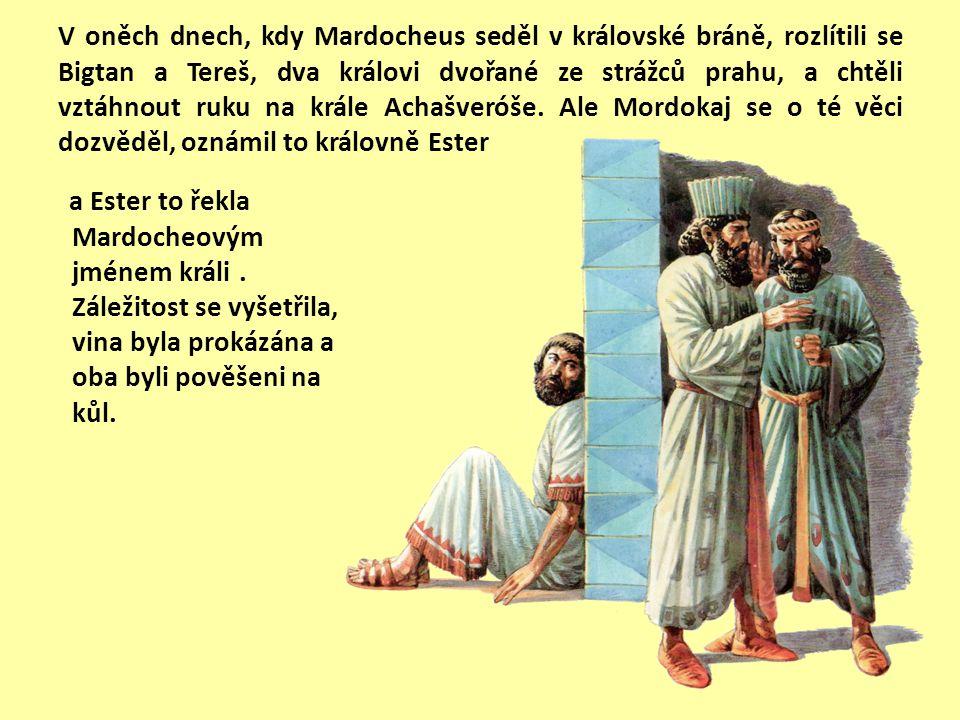 Tak byla Ester vzata ke králi Achašveróšovi do jeho královského domu. Král si Esteru zamiloval nade všechny ženy; získala více jeho přízně a náklonnos