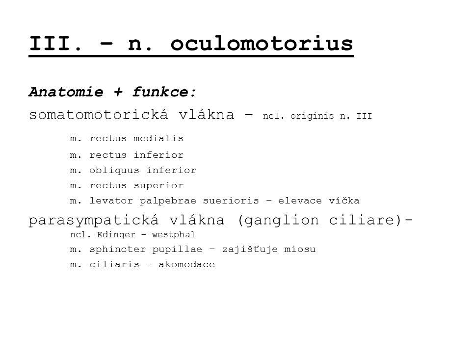 III. – n. oculomotorius Anatomie + funkce: somatomotorická vlákna – ncl. originis n. III m. rectus medialis m. rectus inferior m. obliquus inferior m.